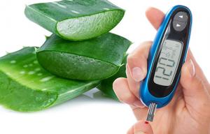 7 Razones Para Utilizar Aloe Vera Para Tratar La Diabetes Saviloe